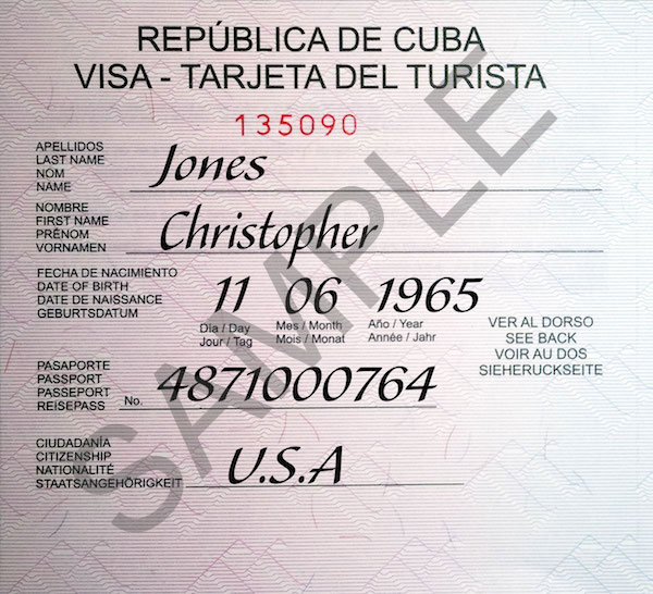 *Please note this image does not reflect the true size of the visa